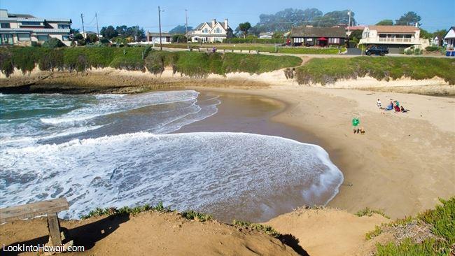 Sunny Cove Beach Beaches On Santa